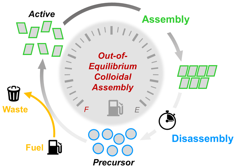MS project: Non-equilibrium self-assembly driven by time-dependent potentials